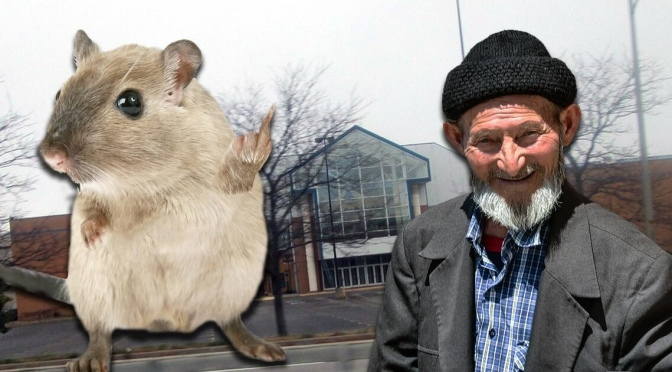 Rats of the Medley Centre Fed Up with Homeless Infestation