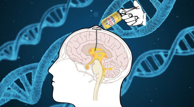 Scientists Find Way to Inject Ruby Red Kolsch Directly Into Happiness Center of the Brain